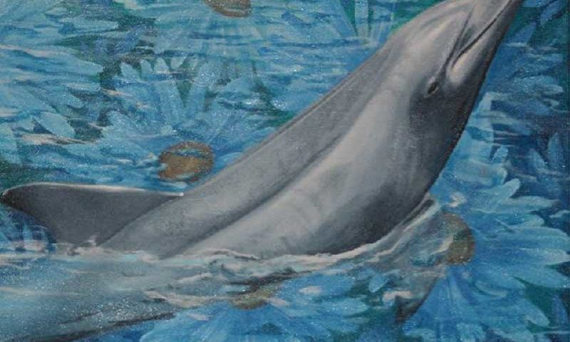 Fine Art Paintings – Dolphin